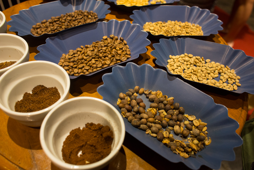 Coffee beans at different stages of being processed.